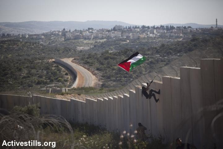 מפגין מטפס על החומה, בלעין, 2014 (אורן זיו / אקטיבסטילס)