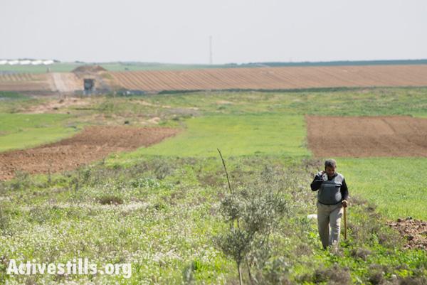 חקלאי פלסטיני בשדות ליד גבול רצועת עזה, 2012 (ריאן רודריק ביילר / אקטיבסטילס)