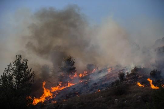 שריפה באזור נטף. צילום: (יונתן סינדל/פלאש90)