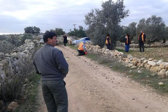 """בעלי האדמות מתבוננים באנשי המנהל האזרחי הכורתים את עצי הזית שלהם. (צילום: מוסא טביב, באדיבות """"לוחמים לשלום"""")."""