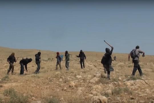 כנופיית הבלאדים בפעולה (צילום מסך)