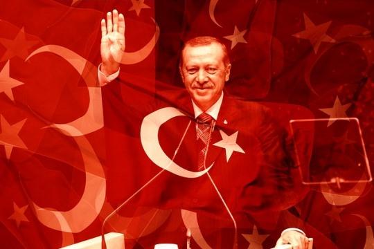 ארדואן ודגלה של טורקיה, מקור כוח לפלסטינים (צילום: אתר pixabay)