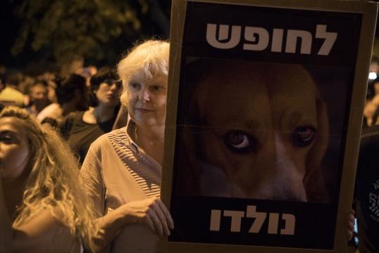 מצעד בעלי החיים, תל אביב (אורן זיו / אקטיבסטילס)