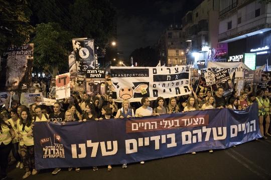חברי הכנסת בחזית הצעדה לזכויות בעלי החיים (אורן זיו / אקטיבסטילס)