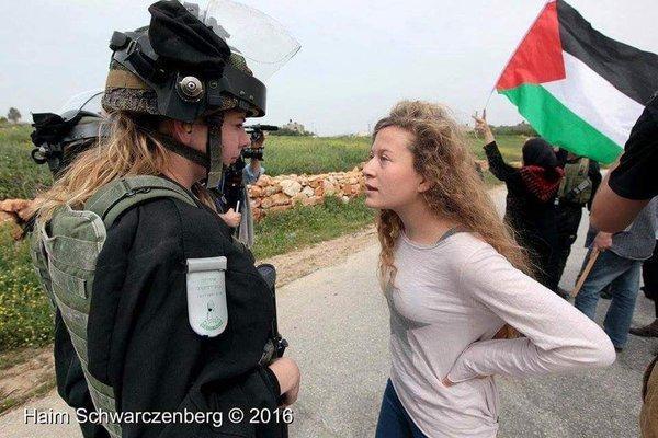 מי דוד ומי גולית? עהד תמימי מול חייל בנבי סאלח (צילום: חיים שוורצנברג)