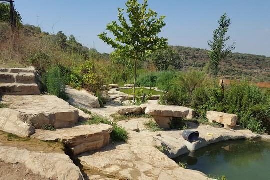 נבי ענר (צילום: עמק שווה)