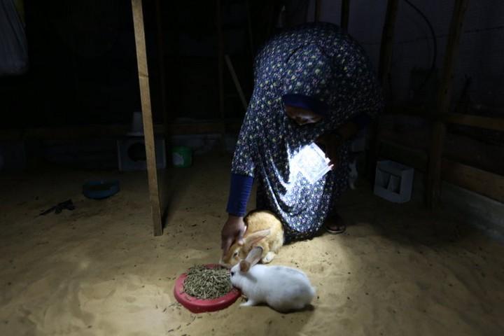 """""""נור אל אמל"""", המנורה הסלולרית והארנבים של שירין. (צילום: מוחמד מנסור. באדיבות """"אנחנו לא מספרים"""")"""