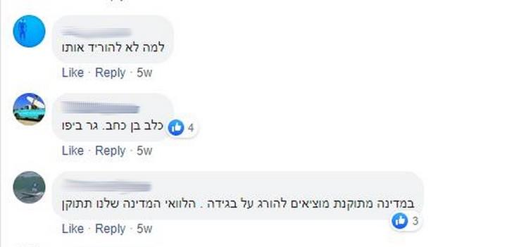 """תגובות להודעה של """"עד כאן"""" שמבקש את עזרת הציבור באיתורו של יונתן פולק (צילום מסך, פייסבוק)"""