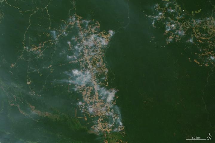 "שריפות באמזונס, צילום לוויין של נאס""א ב-19 באוגוסט 2019"