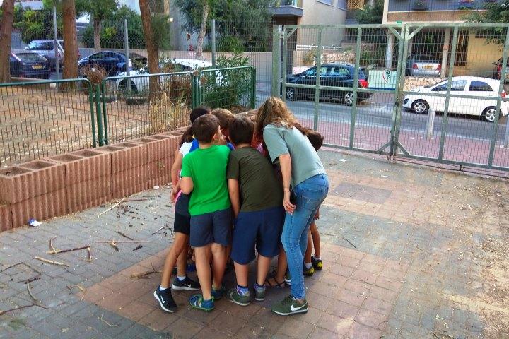 תלמידים בבית הספר בן גוריון בגבעתיים (צילום: גיל גרטל)