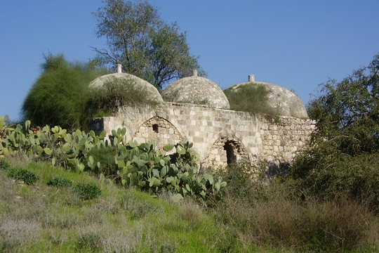 הגבעה בעשרת. המבנה בעל שלוש הכיפות הוא מהשרידים הבודדים שנותרו מהכפר בשית. (צילום: אבישי טייכר ויקימדיהCC BY-SA 2.5 )
