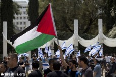 דגל פלסטין, דגלי ישראל (אורן זיו / אקטיבסטילס)