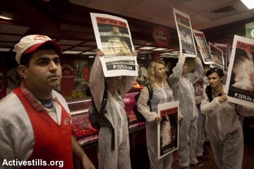 פעולה ישירה של תנועת 269 במפעל זוגלובק. צילום: אורן זיו ,אקטיבסטילס