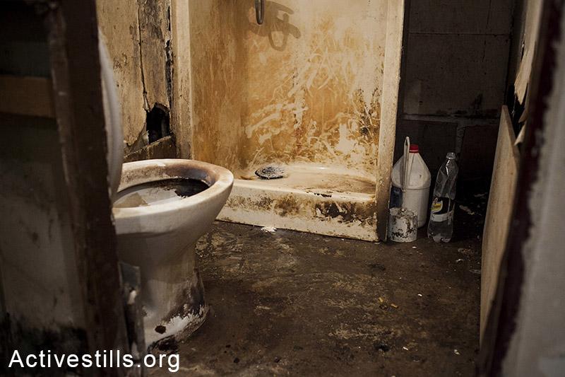 מושב יעבץ, ינואר, 2014. מקלחון ושירותים במגורי עובדים בחקלאות. (שירז גרינבאום/אקטיבסטילס)
