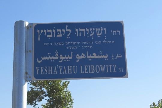 רחוב ישעיהו ליבוביץ בירושלים. (צילום: רענן שמש-פורשנר)