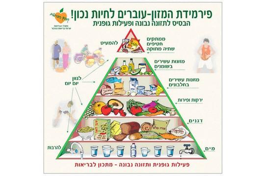 פירמידת המזון המומלצת. צילום מסך מאתר משרד הבריאות