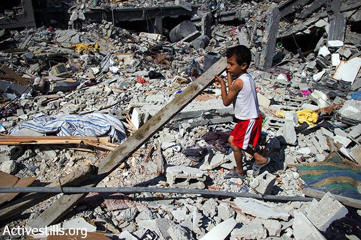 נאדר אבו עודה, בן 6, אוסף עצים מבתים הרוסים כדי לסייע להבעיר אש. 12 באוגוסט 2014. (באסל יאזורי/אקטיבסטילס)