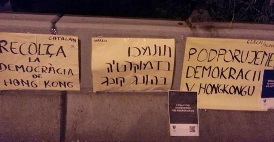 שלטי תמיכה במגוון שפות, גם בעברית ובערבית (צילום: אמנון לוטן)