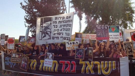 הפגנה בחוות מזור (באדיבות האגודה הישראלית נגד ניסויים בבעלי חיים)