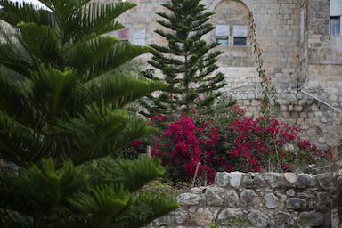 דיר איסתיא (בסאם אלמוהור)