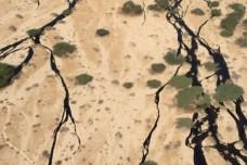 דליפת הנפט בשמורת הטבע עברונה בערבה. (צילום: דוברות המשרד להגנת הסביבה)