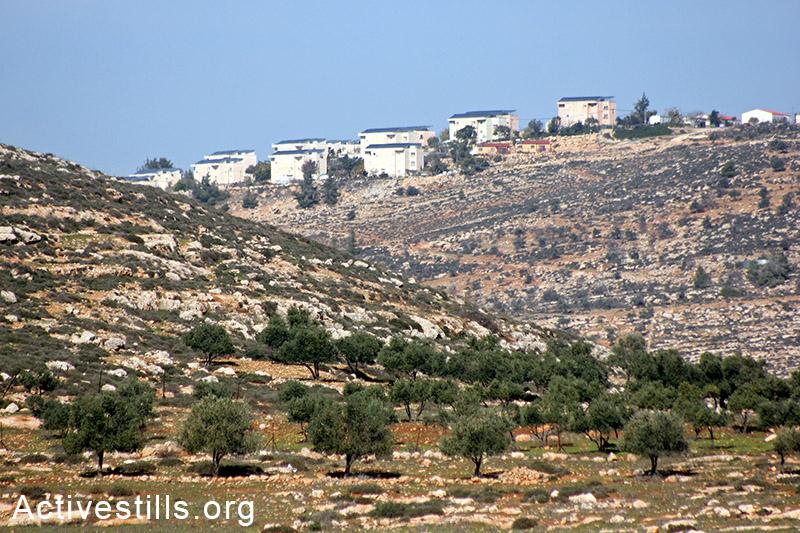 אדמות הכפר סלמה ובמרחק ההתנחלות הלא-חוקית אלון מורה, הגדה המערבית, 5 דצמבר, 2014. אחמד אל-באזז/אקטיבסטילס