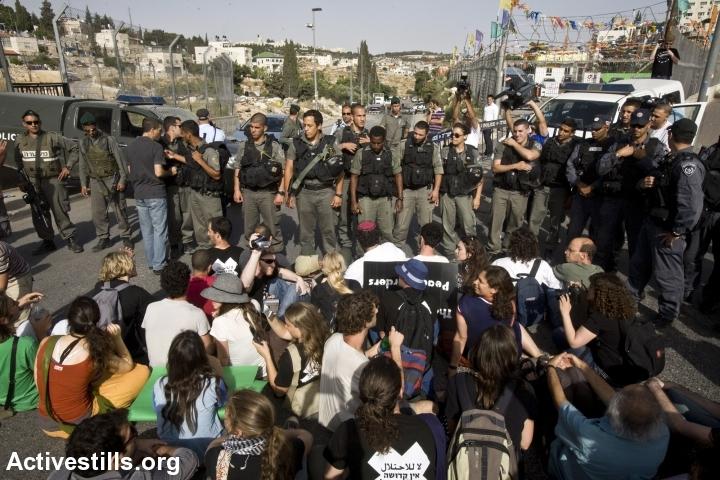 הפגנה בשיח' ג'ראח 14.5.2010 (צילום: אקטיבסטילס)