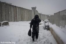 """שקופים מכולם: הח""""כים הערבים באמת צריכים לדאוג לפלסטינים בשטחים"""