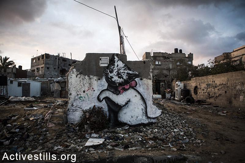 החתול של בנקסי על קיר אחד שנותר על תילו, בית חנון, רצועת עזה, 18 פברואר, 2015. אקטיבסטילס