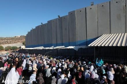 פלסטינים מחכים במחסום. חומת ההפרדה בבית לחם (אקטיבסטילס)