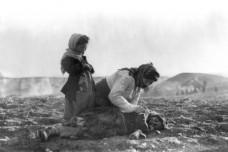 השואה המוכחשת: מאה שנה לרצח העם הארמני