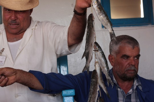 שוק דגים בג'רבה (רפרם חדד)