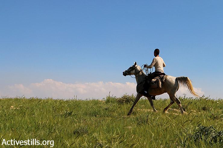 """פלסטיני רוכב על סוס באזור """"c"""" בבקעת הירדן, 13 במרץ, 2015. אזור ״c"""" בשטחים הכבושים נמצא תחת שליטה ישראלית מלאה, ולפלסטינים אסור לבנות או לשתול שם. כיום קיימות 27 התנחלויות בבקעה אשר מהווה 28% מכלל השטחים הכבושים. לאחרונה פרסמה ישראל כי בכוונתה לבנות חומה בגבול עם ירדן. (אקטיבסטילס)"""