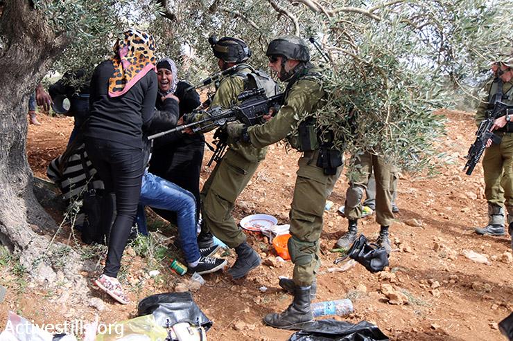 חיילים מתעמתים עם נשים פלסטיניות במהלך ארוע נטיעות עצי זית לזכרה של רייצ'ל קורי סמוך לכפר קריות, 15 במרץ, 2015. שני פעילים נעצרו במהלך הנטיעות. (אקטיבסטילס)