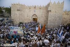 הפרח ש(כמעט) סיכן את מצעד הדגלים בירושלים