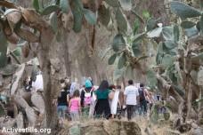 יהודים מדרום אפריקה בטקס התנצלות על חלקם במחיקת כפר ערבי