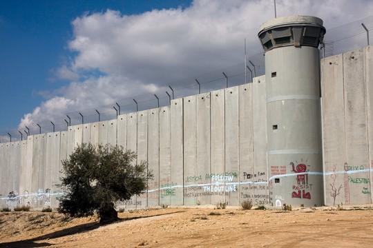 חומת ההפרדה בבית לחם (אקטיבסטילס)