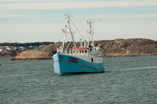 הספינה מריאן, שנתפסה על ידי הצבא בדרך לעזה. משט 2015 (Ship to Gaza)