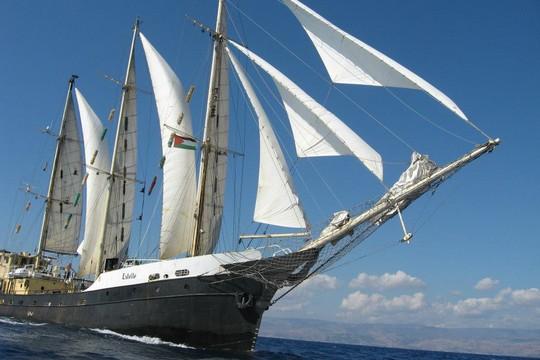ספינת האסטל, משט לעזה (רעות מור)
