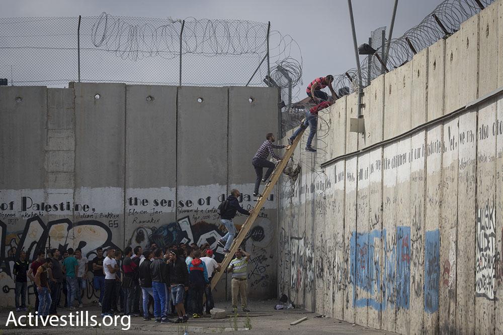 צעירים עוברים מעל חומת ההפרדה באזור קלנדיה (אורן זיו / אקטיבסטילס)
