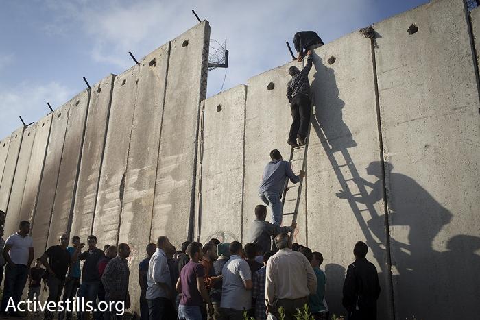 פלסטינים מטפסים על חומת ההפרדה בא-ראם לתוך ירושלים (אורן זיו / אקטיבסטילס)
