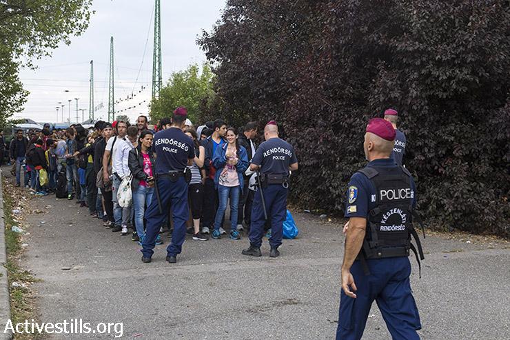 שוטרים הונגרים מארגנים את הפליטים שהגיעו לתחנת הרכבת בשורות של ארבע לפני תחילת  צעדתם לכיוון הגבול האוסטרי. הגשלום, הונגריה, 14 בספטמבר, 2015. (מרייקה לאוקן/אקטיבסטילס)