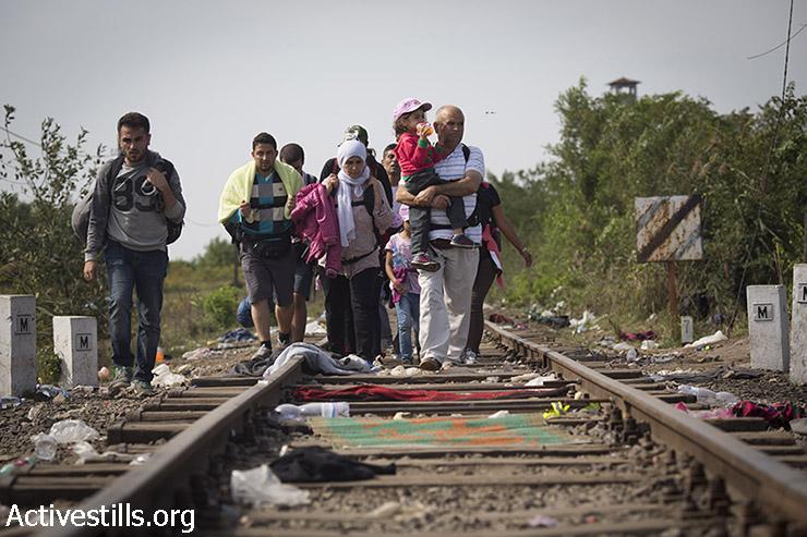 פליטים צועדים לעבר גבול סרביה-הונגריה, לאחר שהונגריה סגרה את גבולותיה ולא אפשרה לפליטים לחצות את המדינה במסעם לעבר מדינות מערב וצפון אירופה, 15 בספטמבר 2015. (אורן זיו/אקטיבסטילס)