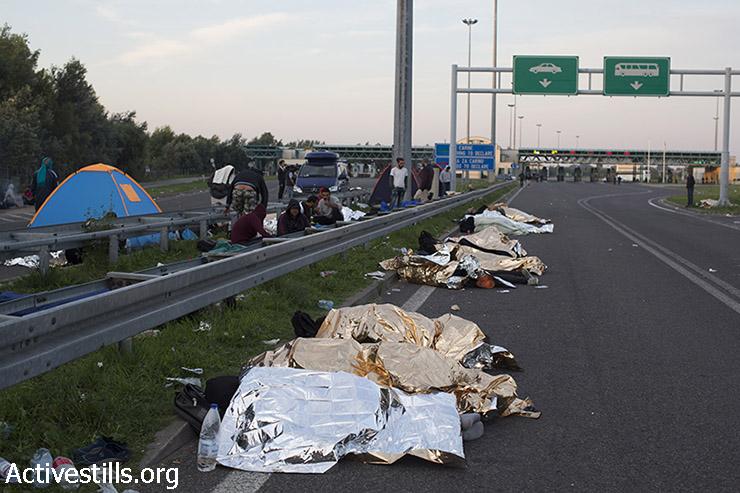 פליטים נחים לצד הכביש בצד הסרבי של גבול סרביה-הונגריה, לאחר שהונגריה סגרה את הגבול בפניהם. (אורן זיו/אקטיבסטילס)