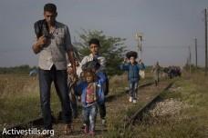 """פליטים על גבול הונגריה: """"לא מים ולא אוכל - פיתחו את הגבול!"""""""