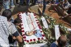 71 הרוגים פלסטינים בחודש אוקטובר