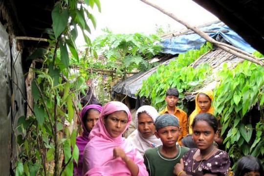 פליטים רוהינגים, בנגלדש (מחלקת המדינה האמריקאית)