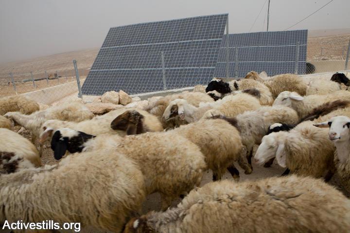 פאנלים סולאריים בכפר לא מוכר בדרום הר חברון (יותם רונן / אקטיבסטילס)