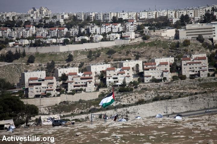 מעלה אדומים, ומולה המאחז הפלסטיני הזמני באב אל-שמס, 2013 (אן פאק / אקטיבסטילס)