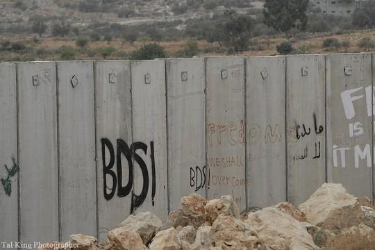 גרפיטי חרם על החומה בנעלין (Tal King CC BY-NC 2.0)